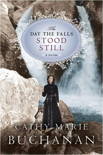 Falls_stood_still_cover