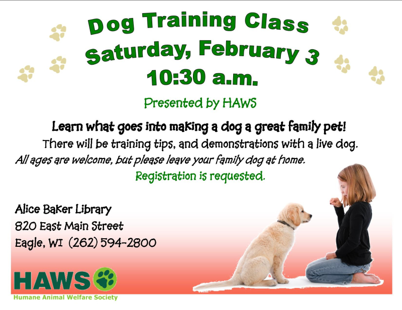 HAWS dog training
