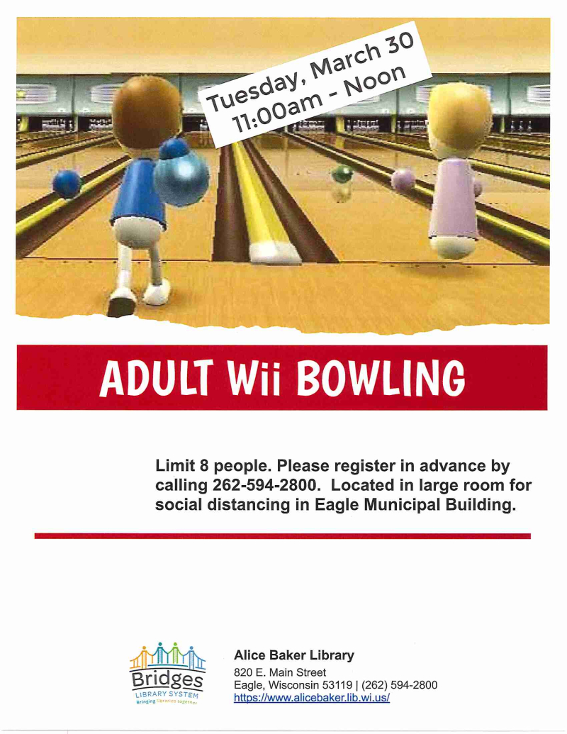 Wii Bowling 3-30